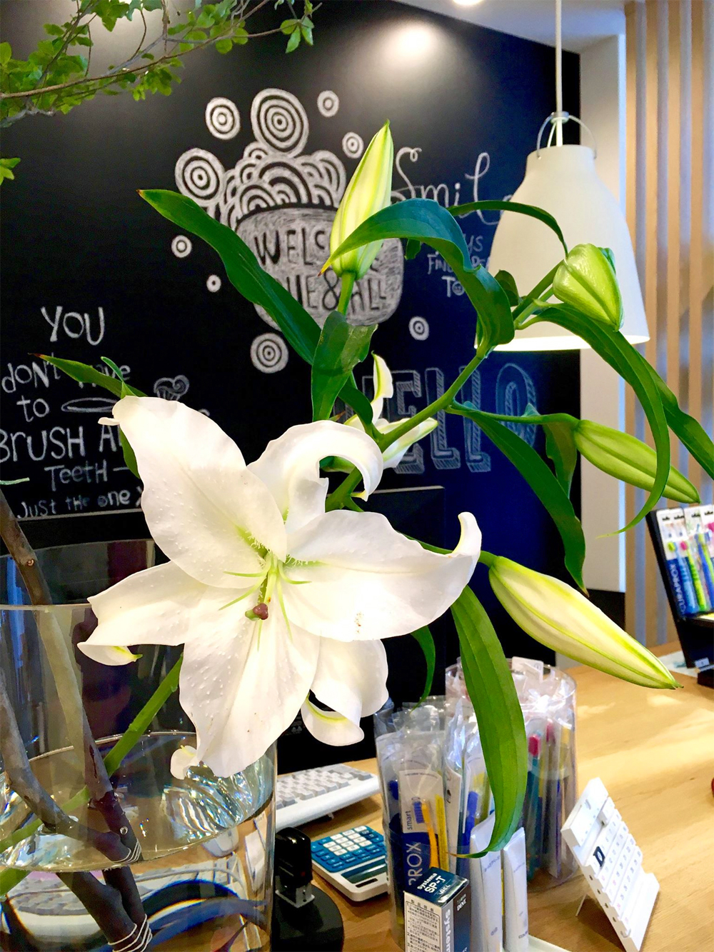 今週の受付のお花はカサブランカ!
